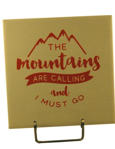 Mountain-Coaster